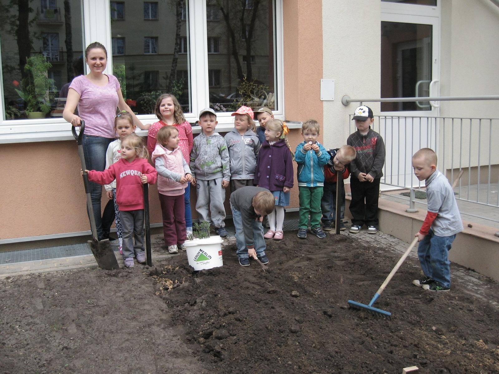 Zakładamy ogród – fotoreportaż gr VIII