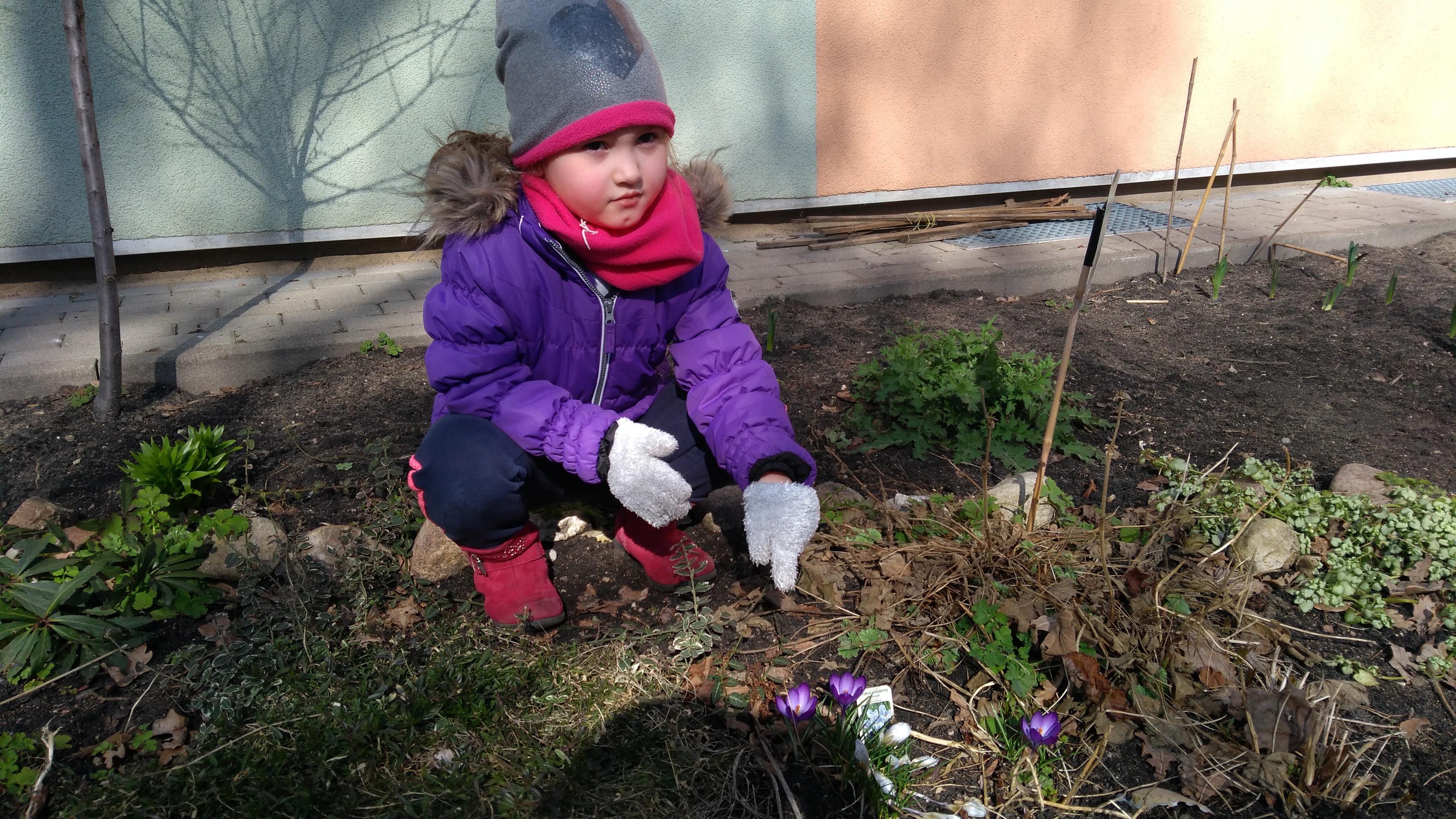 Pierwsze oznaki wiosny – grupa VII