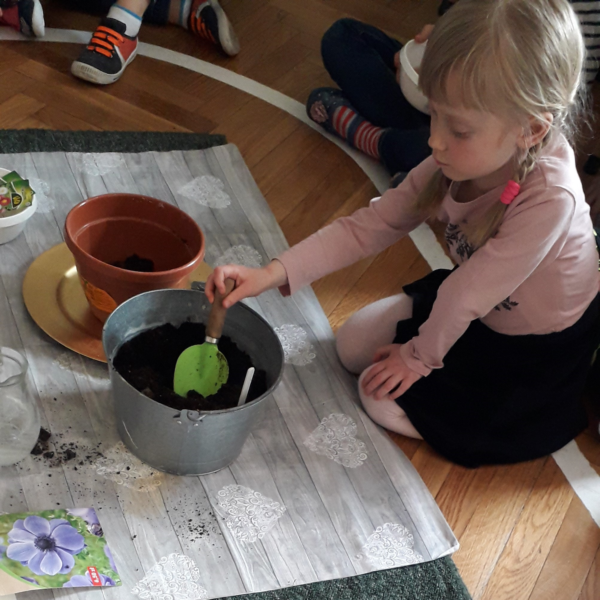 Grupa V sadzi roślinki