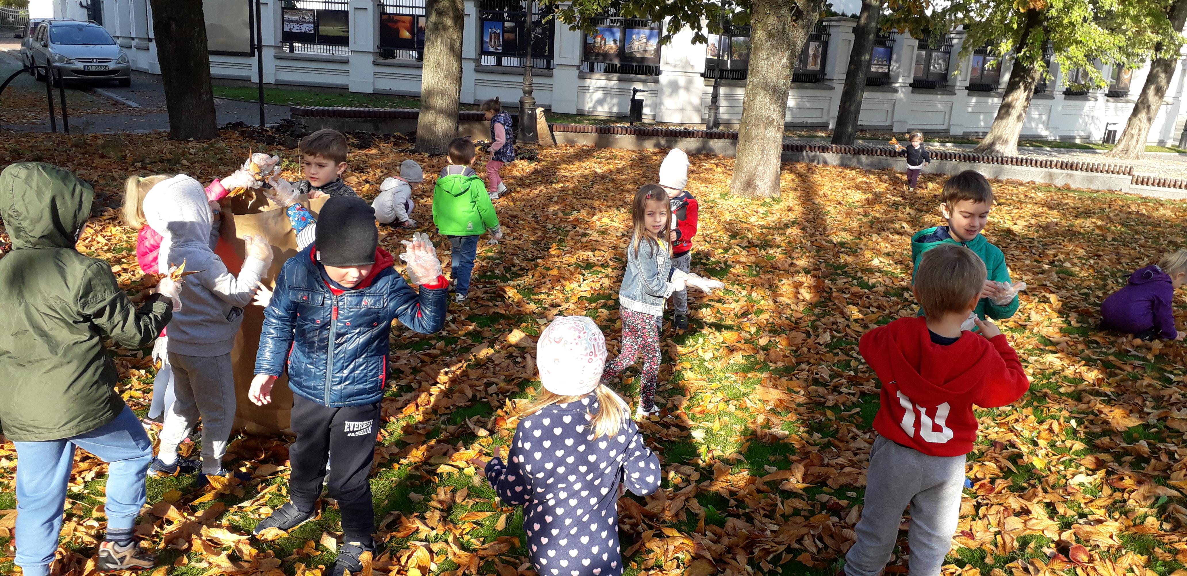 Jesienne prace w ogrodzie przedszkolnym i w parku – grabienie liści