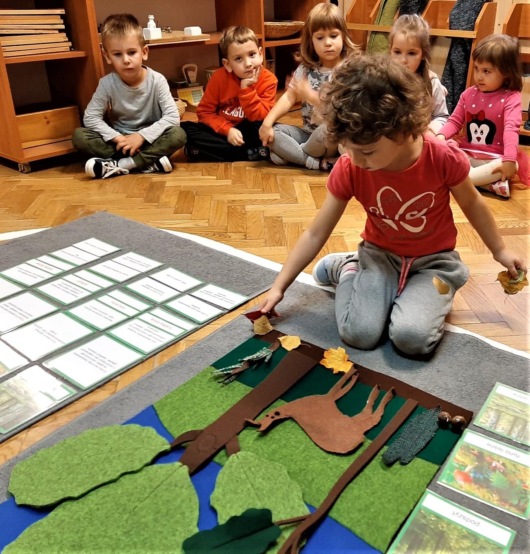 Przedszkolaki poznają las – grupa II