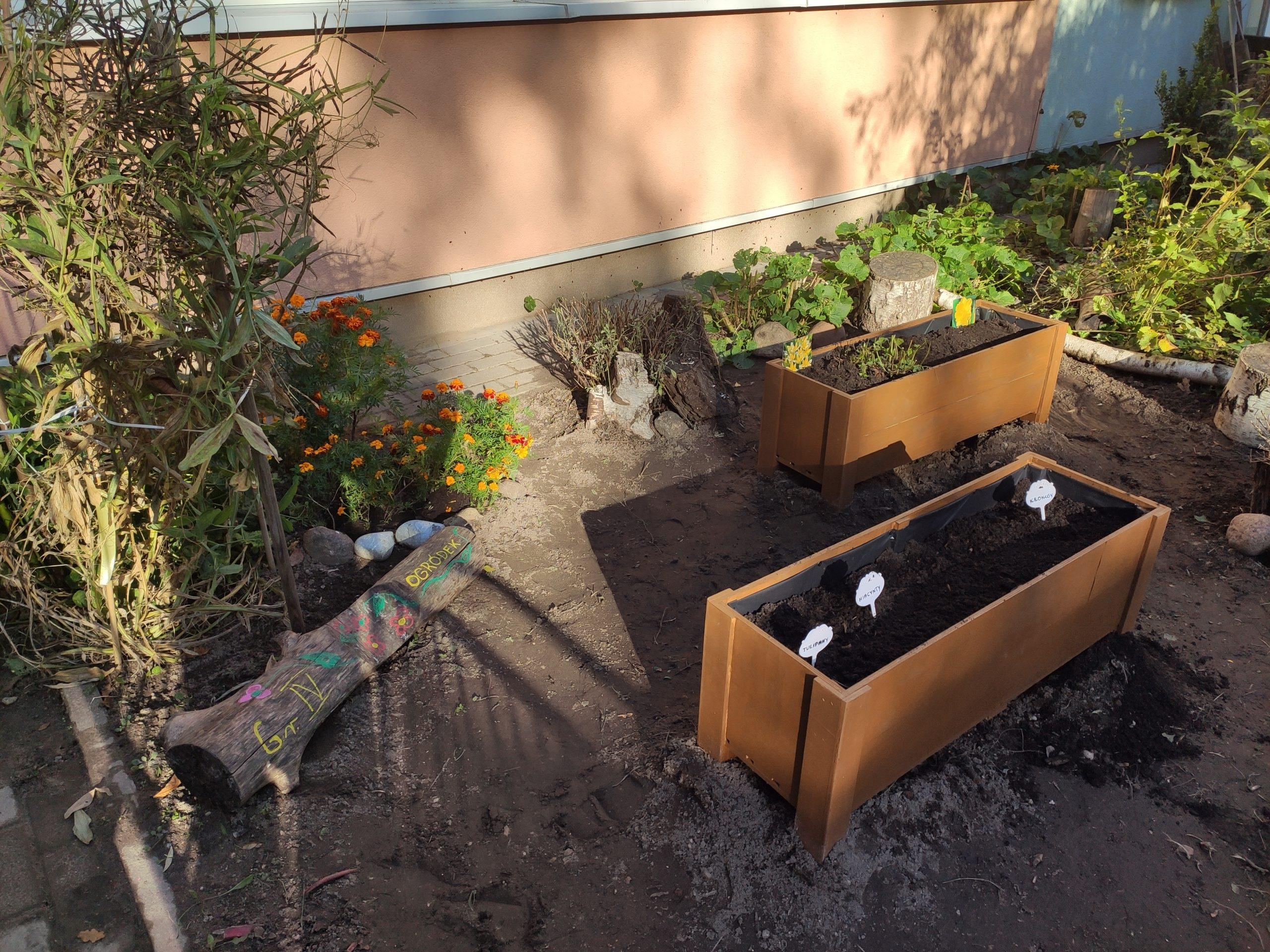 Nowy ogródek w grupie IV