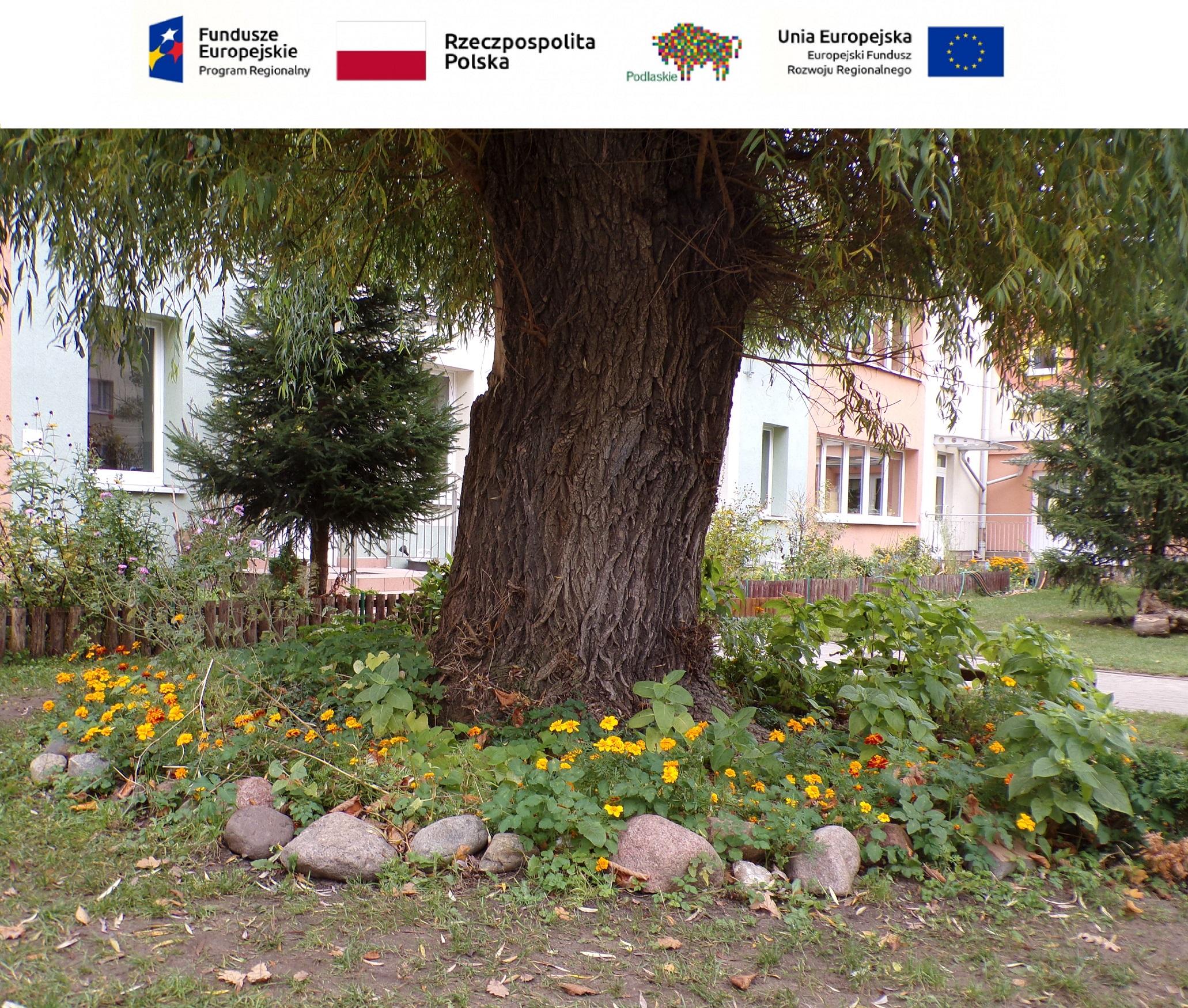 """Koło fotograficzne """"FotoPstryk"""" – jesienny ogród w przedszkolu"""